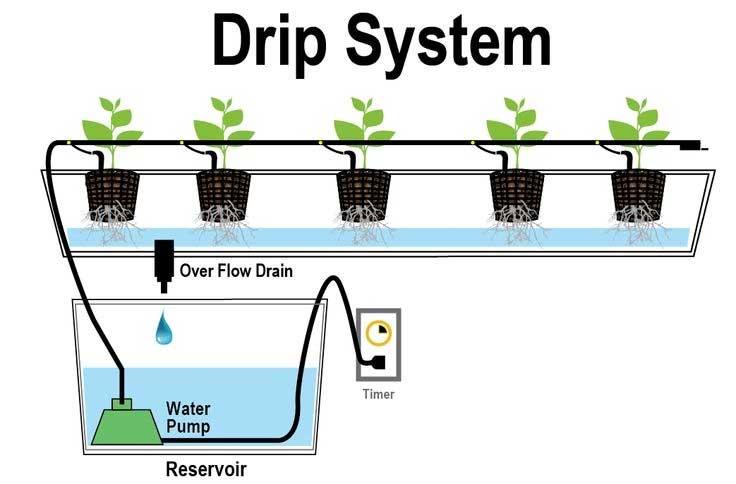 drip-system