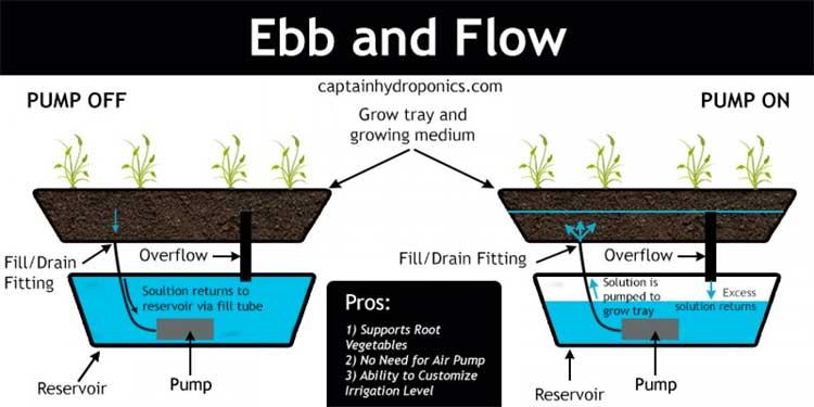 ebb-flow-system